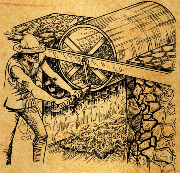 Pré-séchage du Yerba Maté - Image